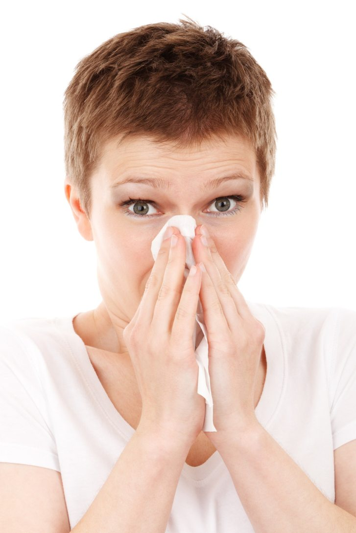 allergy-cold-disease-flu-41284 (1)